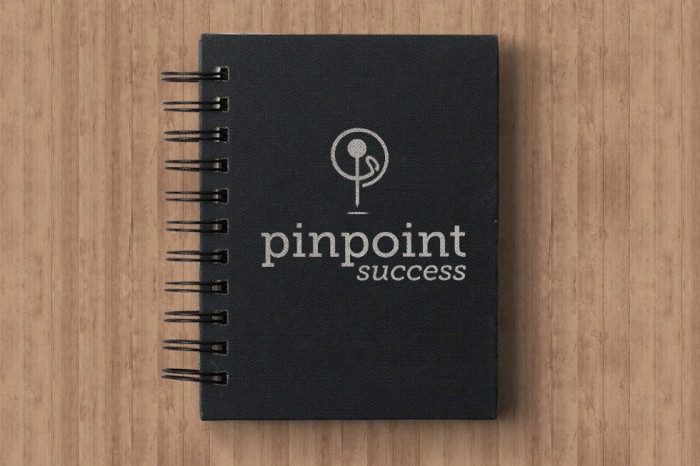 Pinpoint Success