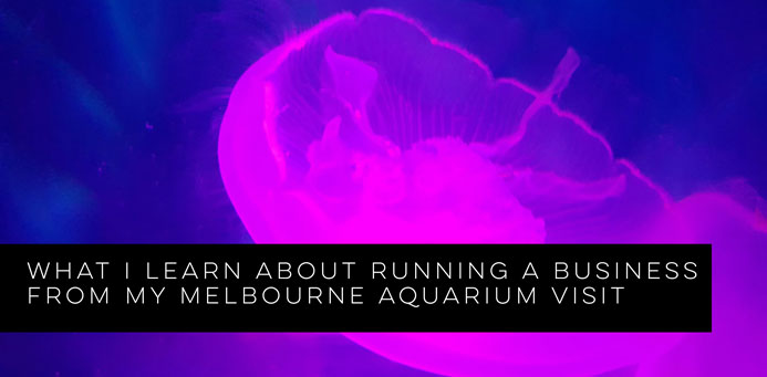 What I Learn About Running a Business from my Melbourne Aquarium Visit