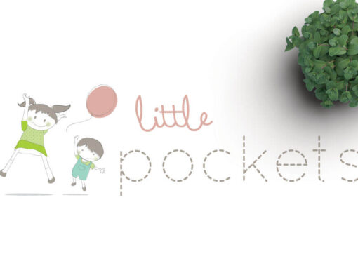 Little Pocket Logo + Website Design
