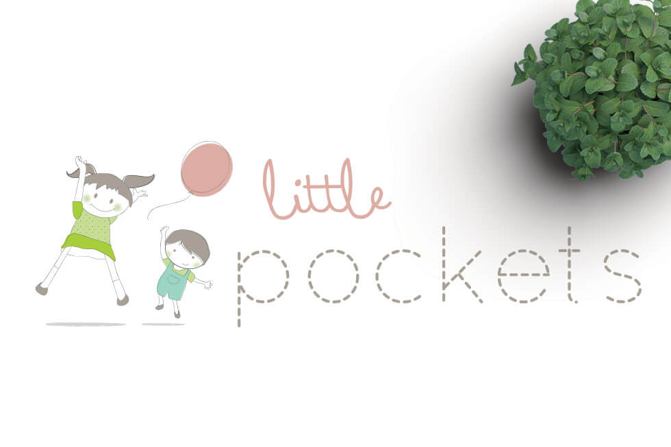 Little Pocket Logo + Website Design